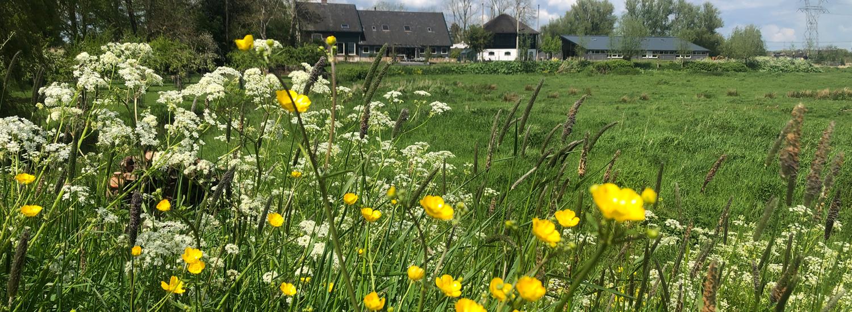 Zijaanzicht Boerderij vanaf Naardermeer_Overhorn Weesp